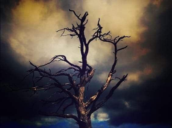 Zmar azkáza… naděje aobnova